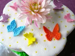 Schmetterling-Torte3
