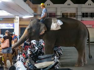 Thailand_38